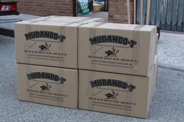 cajas mudanza economicas