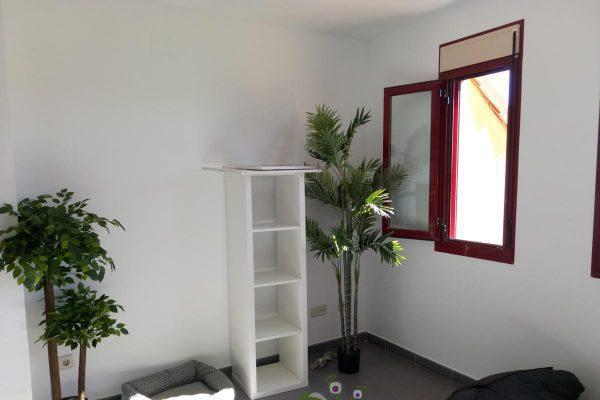 servicio de mudanza, con interiorismo y decoracion